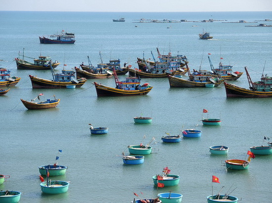 fishing fleet in Muine Vietnam2